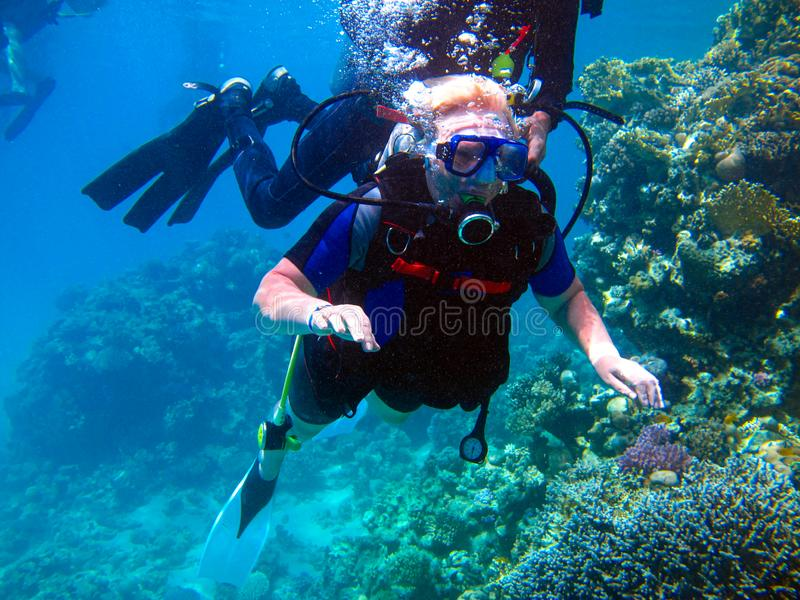 Woman scuba diver and beautiful colorful coral reef underwater royalty free stock photography