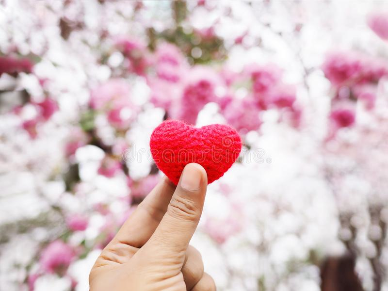 Woman selfie hand holding heart shape over flowers blur background stock photography