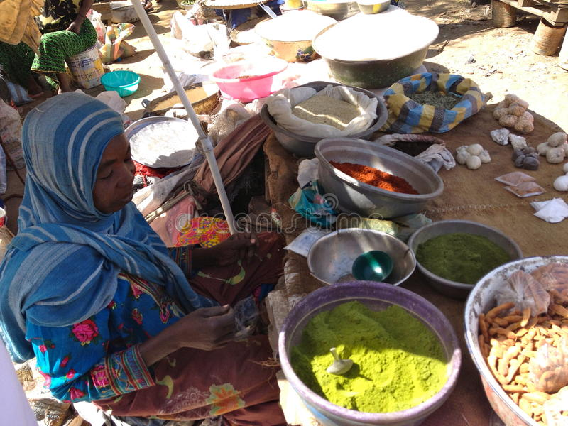 Woman selling spices on a local market in Farcha, N'Djamena, Chad stock images