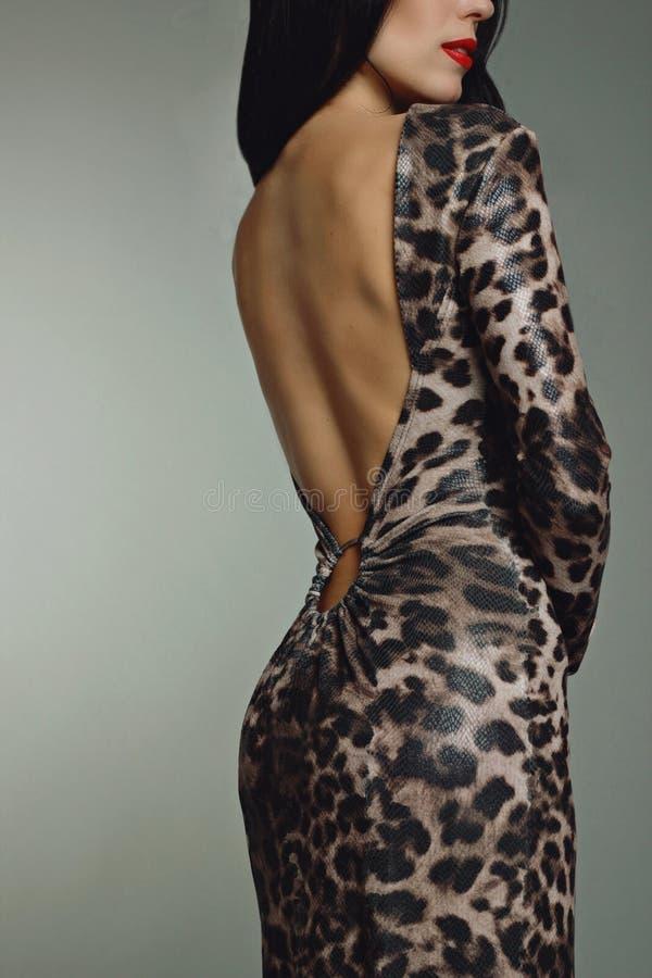Woman in evening animal print dress back torso. royalty free stock photo