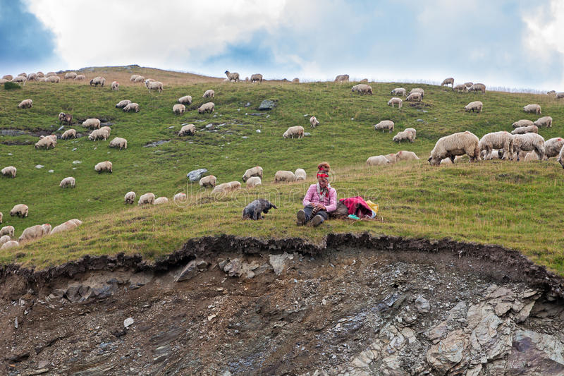 Woman shepherd royalty free stock images