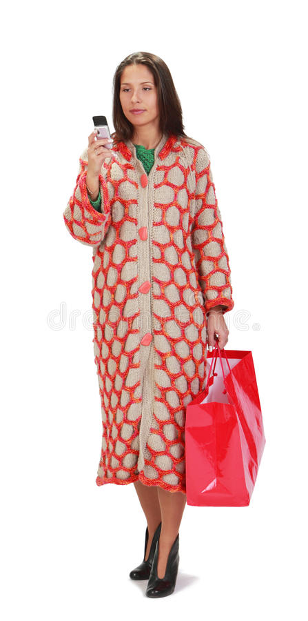 Download Woman shopping stock image. Image of adult, happiness - 12207495