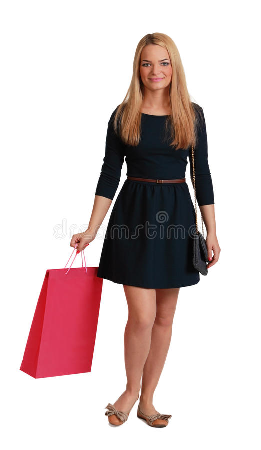 Download Woman with Shopping Bag stock image. Image of background - 28797441