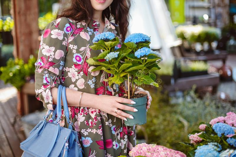 Woman shopping for flowers in garden centre variation of plants royalty free stock photos