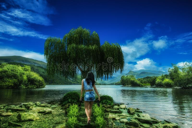 Woman on shore royalty free stock images