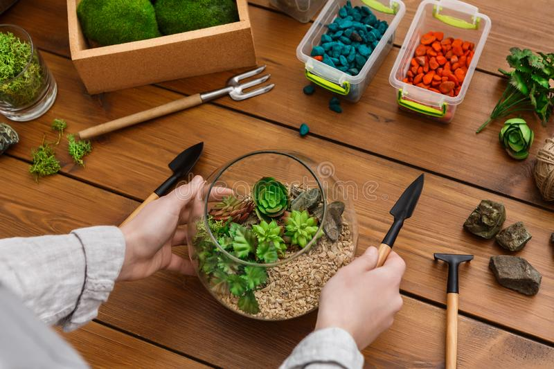 Woman showing master class on making florarium in glass jar. With various tools on table stock photography
