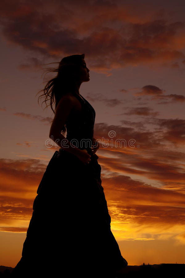 Free Woman Silhouette Formal Dress Hair Blow Royalty Free Stock Photos - 35164308