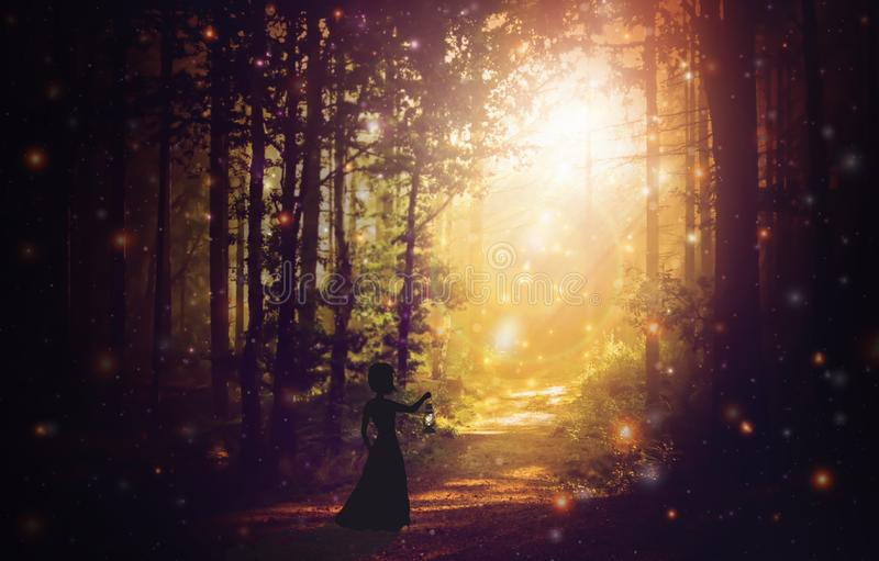 Woman silhouette with a lantern in an enchanted, magical forest, sun light stock photo