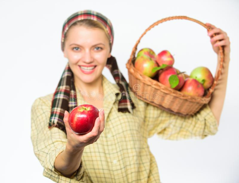 Woman sincere villager carry basket with natural fruits. Woman gardener rustic style offer you apple on white background. Selective focus. Lady gardener proud stock images
