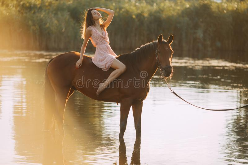 Woman sits astride a horse at river. A young woman sits astride a horse on background of sunbeams and river stock photography