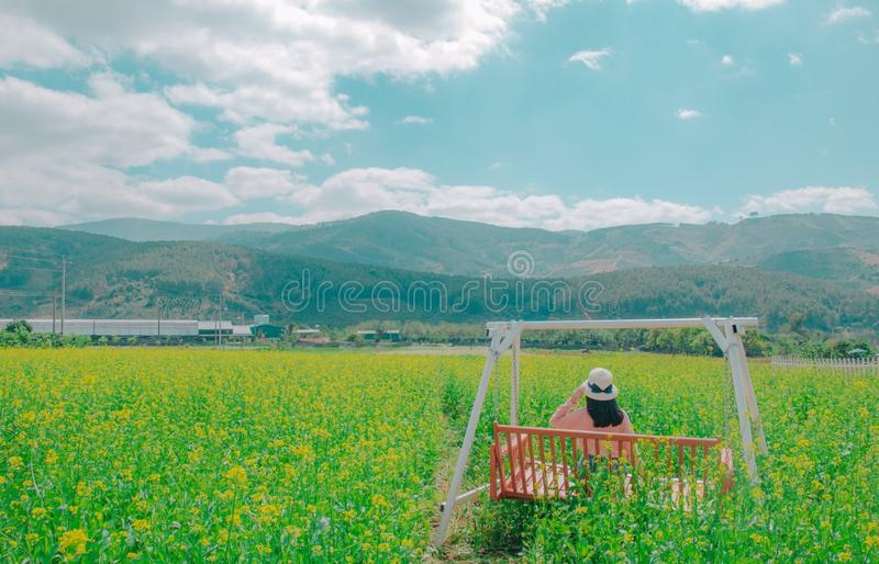 Woman Sits On Brown Wooden Swing Bench On Yellow Petaled Flower Field Free Public Domain Cc0 Image