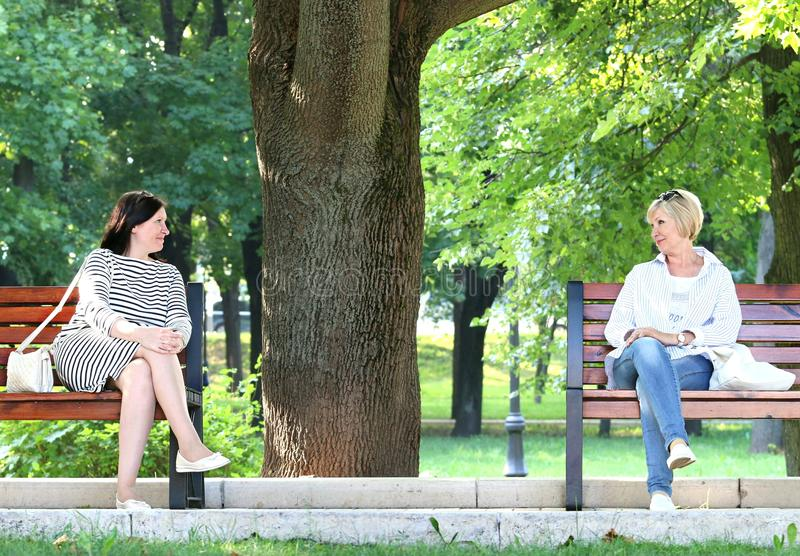 2 Woman Sitting in the Different Bench Chair Near Tree in the Park during Daytime stock image