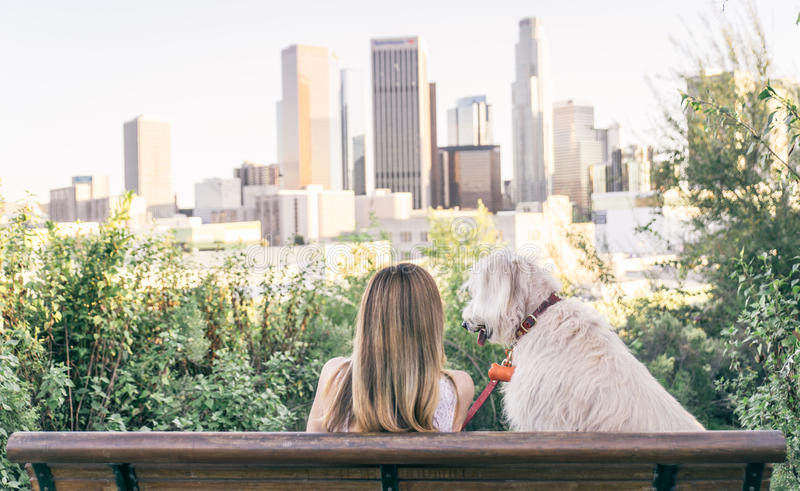 Woman sitting with her dog. And enjoying the skyline view stock images