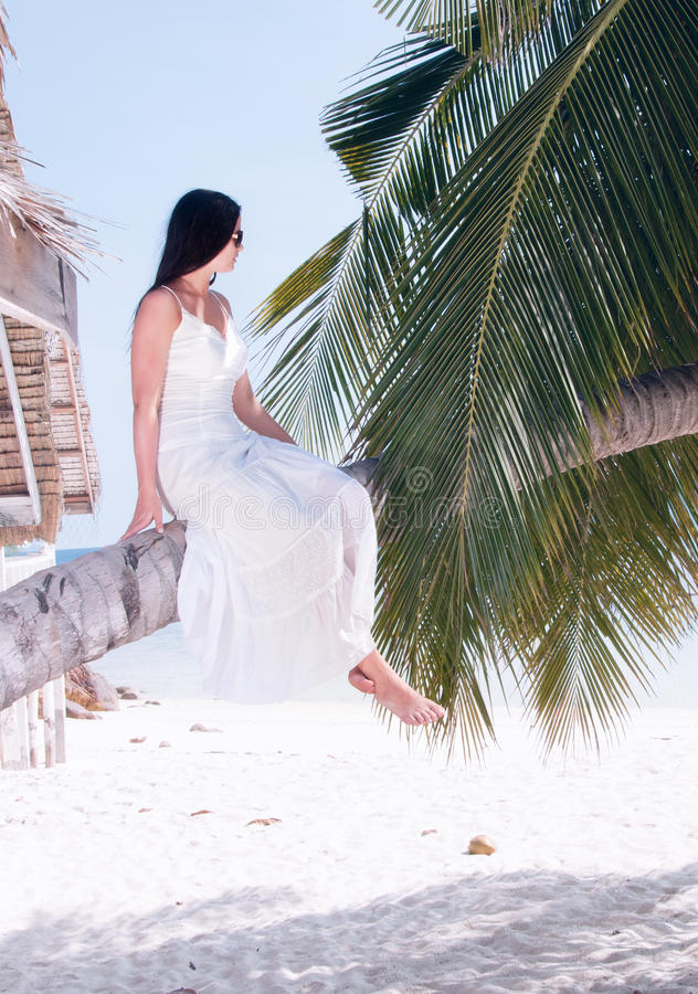 Download Woman Sitting On Palm Tree On The Beach Stock Photo - Image: 32445412