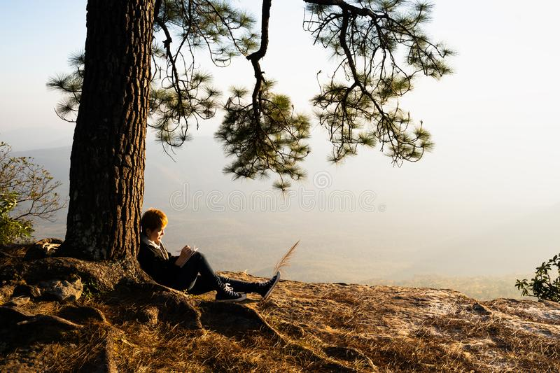 Woman sitting under pine tree reading and writing stock photo
