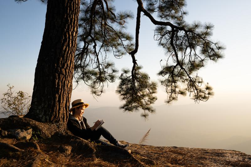 Woman sitting under pine tree reading and writing royalty free stock image