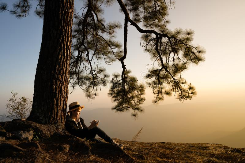Woman sitting under pine tree reading and writing stock image