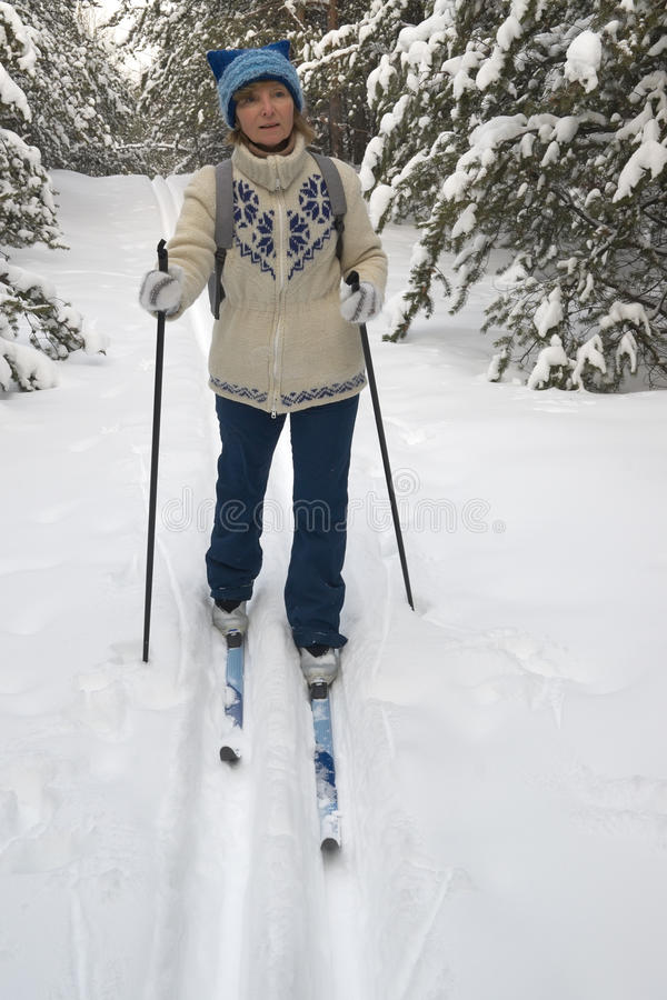 Woman skiing. In winter forest stock photos