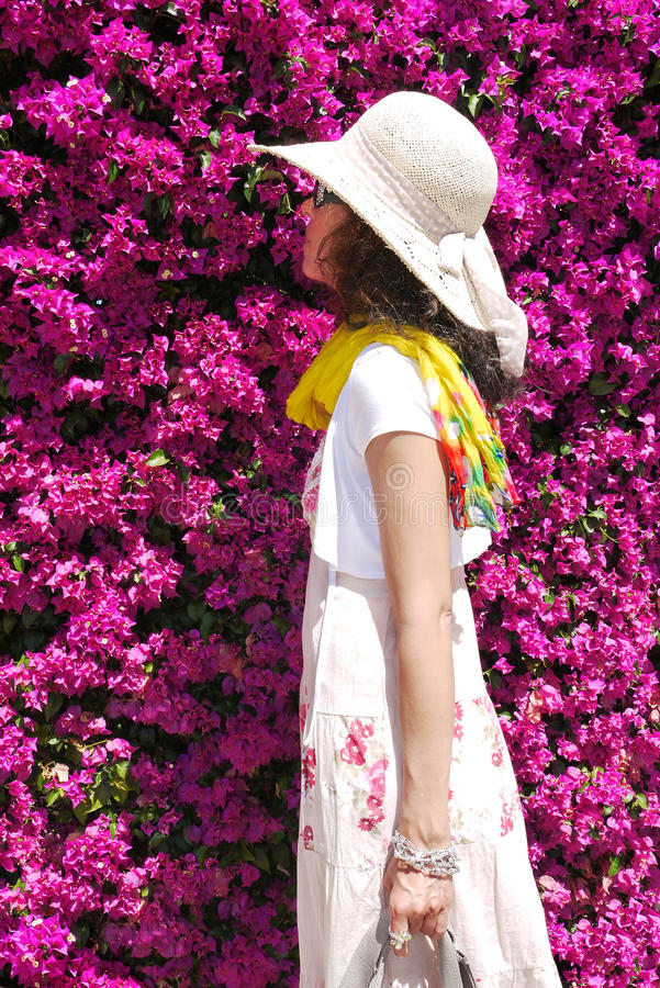 Woman smelling on Bougainvillea blossoms stock photos