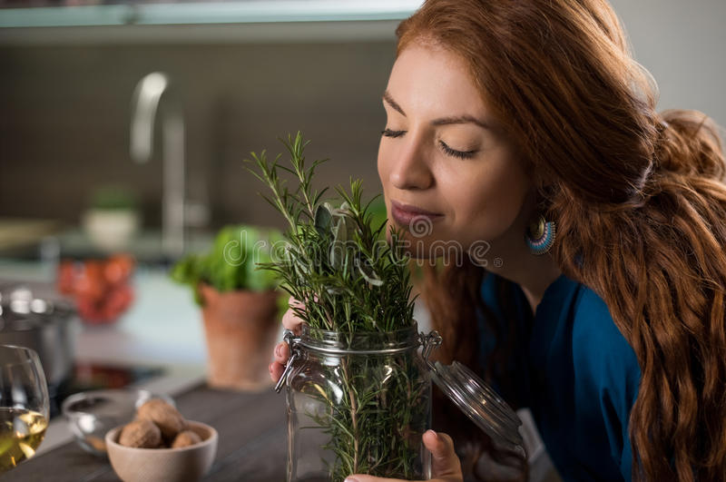 Woman smelling rosemary. Happy young woman enjoying the fragrance of plants. Young woman energizing herself with plant smell. Portrait of woman smelling rosemary royalty free stock image