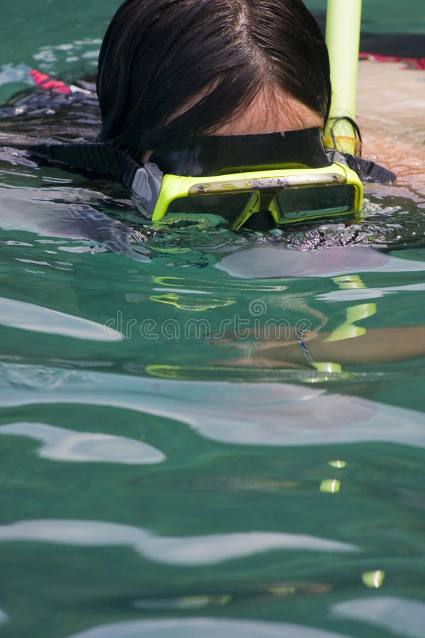 Download Woman snorkeling stock photo. Image of reflected, details - 14901864
