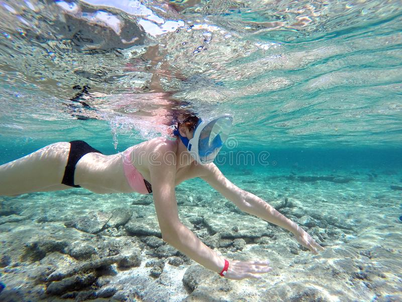 Woman snorkeling close to coral reef, Red Sea, Egypt stock photo