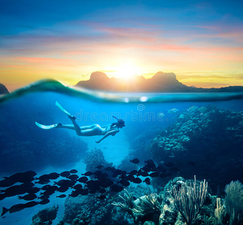 Free Woman Snorkeling In Clear Tropical Waters Ocean On Sunset Day Stock Photo - 86637320