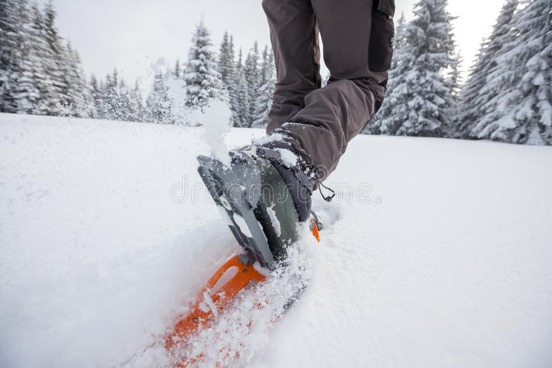 Download Woman Snowshoeing In Winter Carpathian Mountains Stock Photo - Image: 33963362