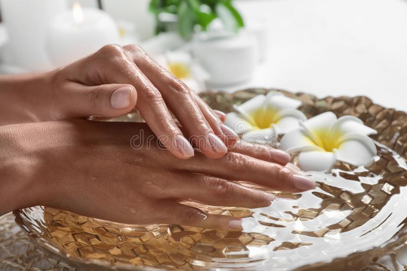 Woman soaking her hands in bowl of water and flowers on table, closeup. Spa treatment royalty free stock images