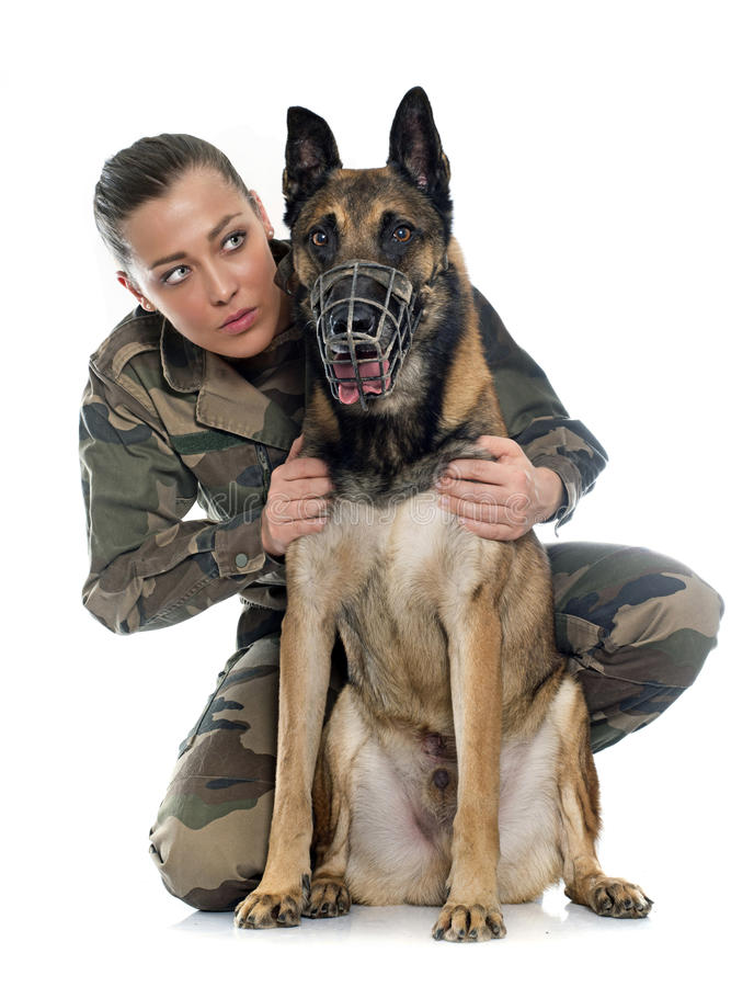 Woman soldier and malinois stock photography