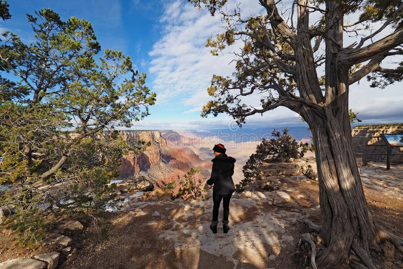Woman on the South Rim Trail in the Grand Canyon. royalty free stock photography