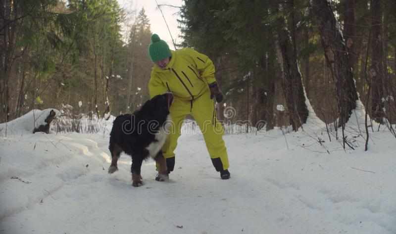 Woman playing with the dog in winter forest stock images