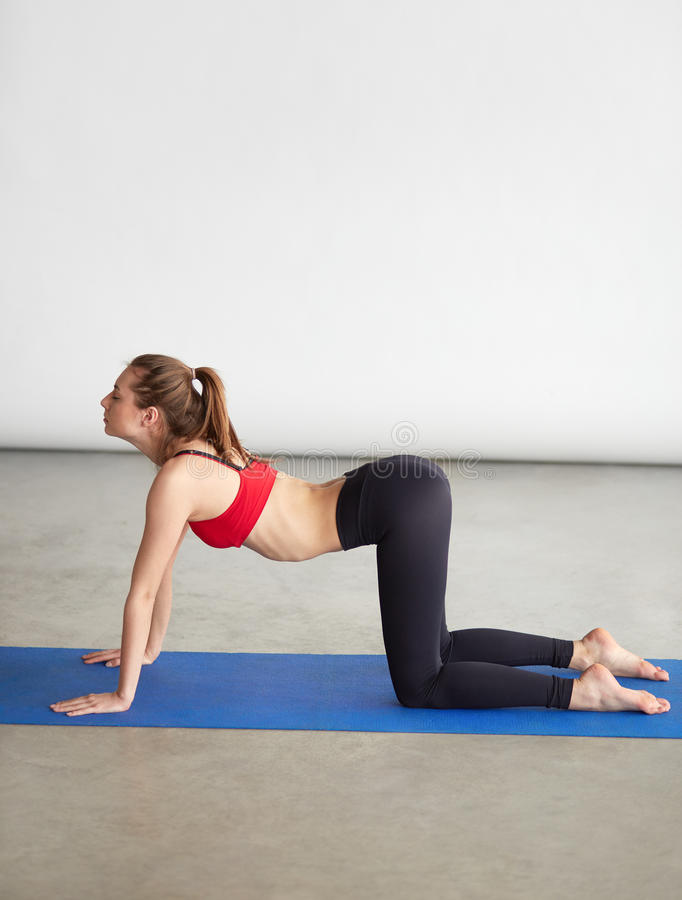 Woman in sportswear standing on hands and knees. Vertical image of fit young woman in sportswear working out and standing on hands and knees in Table pose. Full stock photo
