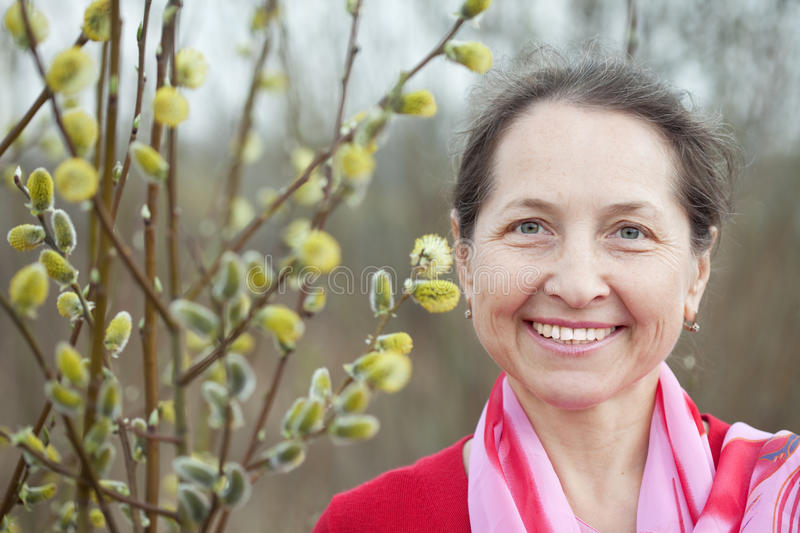 Woman in spring pussywillow plant stock image