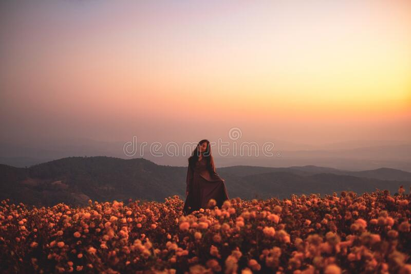A woman standing among beautiful flower garden on the top of the hill stock photos