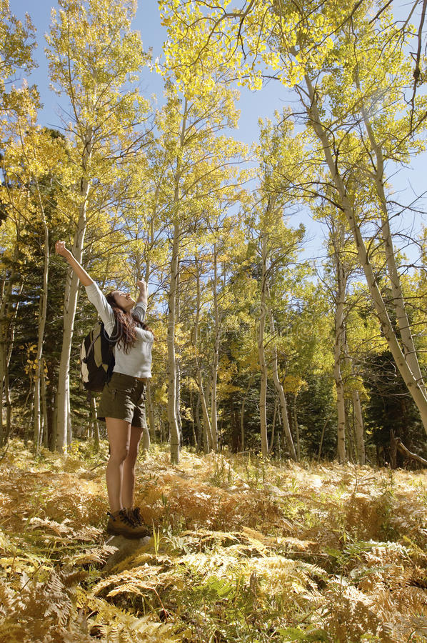 Download Woman Standing In Forest With Arms Raised Stock Image - Image: 29647813