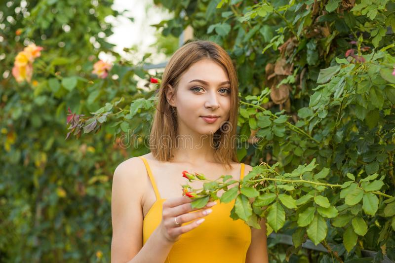 Woman standing posing in the garden near green bushes with pink roses royalty free stock photos