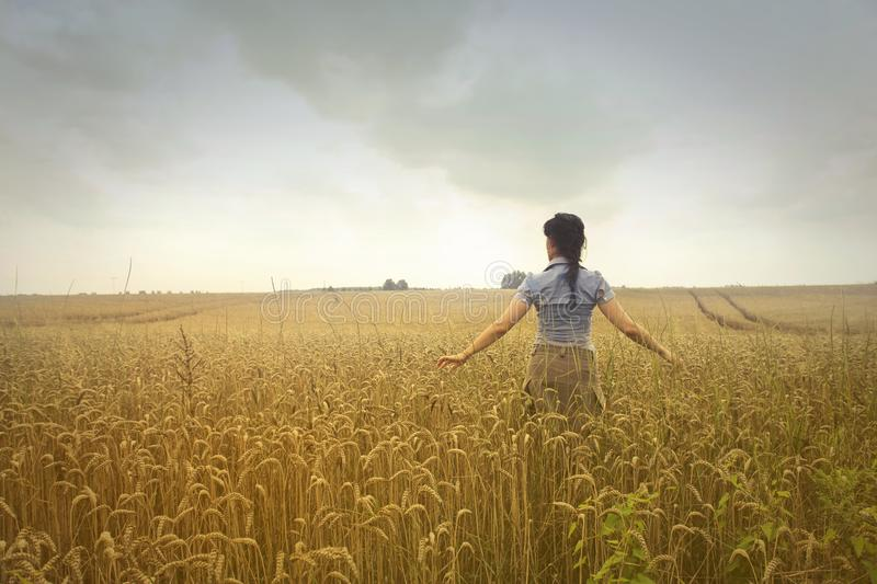 Woman Standing on Rice Field during Cloudy Day stock images