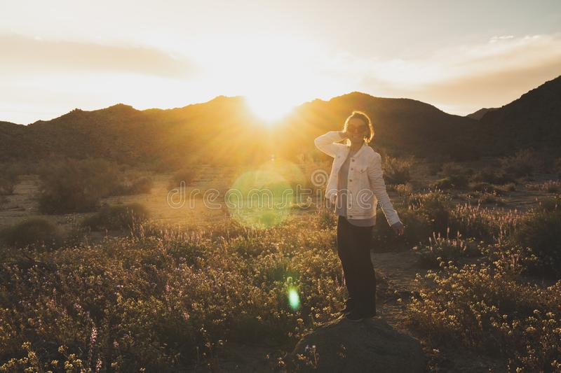 Woman standing on a rock in a wildflower field at dusk in Joshua Tree National Park California. Sunflare in photo.  stock photo
