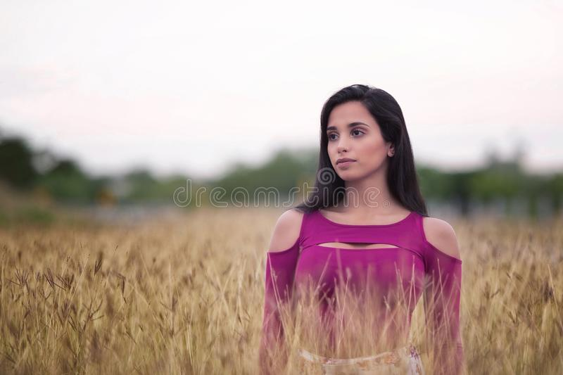 Woman standing in wheat field stock images
