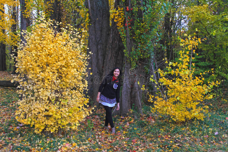 WOMAN STANDS BESIDE AUTUMN LEAVES. A woman stands beside trees covered with yellow autumn leaves in Japan stock image