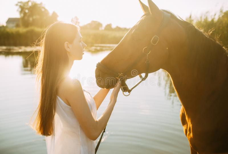 Woman stands next to horse on river at sunset. A young woman stands next to horse on background of river at sunset. Backlight stock photo
