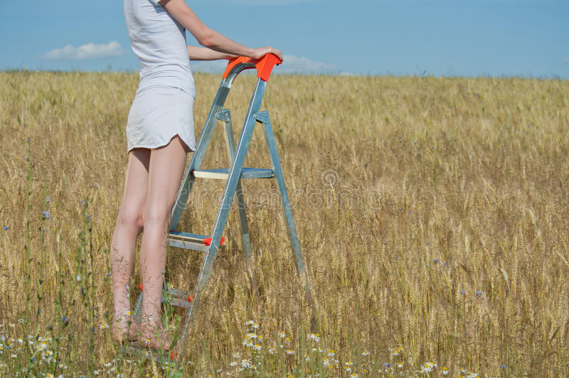 Download Woman Stands On The Stepladder Stock Image - Image: 25947051