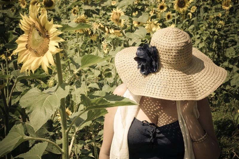 Woman in straw hat with big blue faux flower with head down in field near big sunflower flower. royalty free stock photo