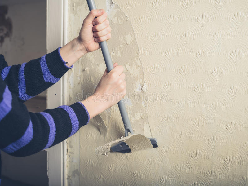 Woman stripping wallpaper. A young woman is renovating a house and is stripping off the wallpaper with a scraper royalty free stock photography