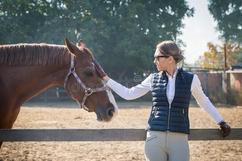 Woman strokes a horse. Young beautiful woman communicates with a horse stock photography