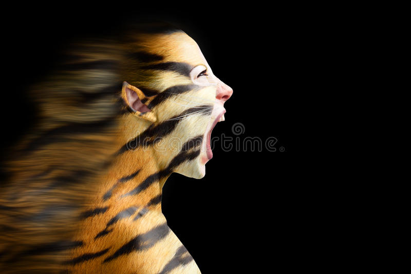 Woman in stylized tiger stock images