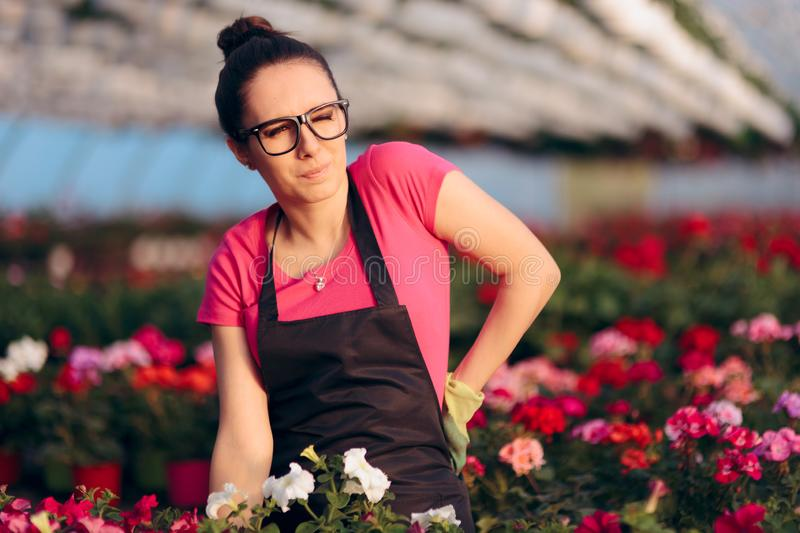 Woman Suffering Injuries While Working in Floral Greenhouse royalty free stock photography
