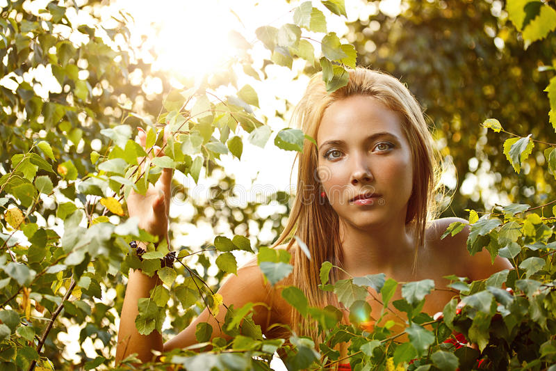 Woman at summer green park royalty free stock photography