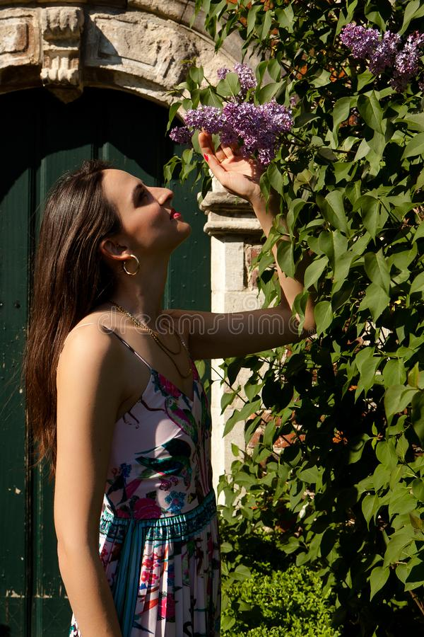 Woman sun lilac syringa wall door, Groot Begijnhof, Leuven, Belgium. Woman in colorful summer dress looking at lilac or syringa flowers on the coble stone in royalty free stock images